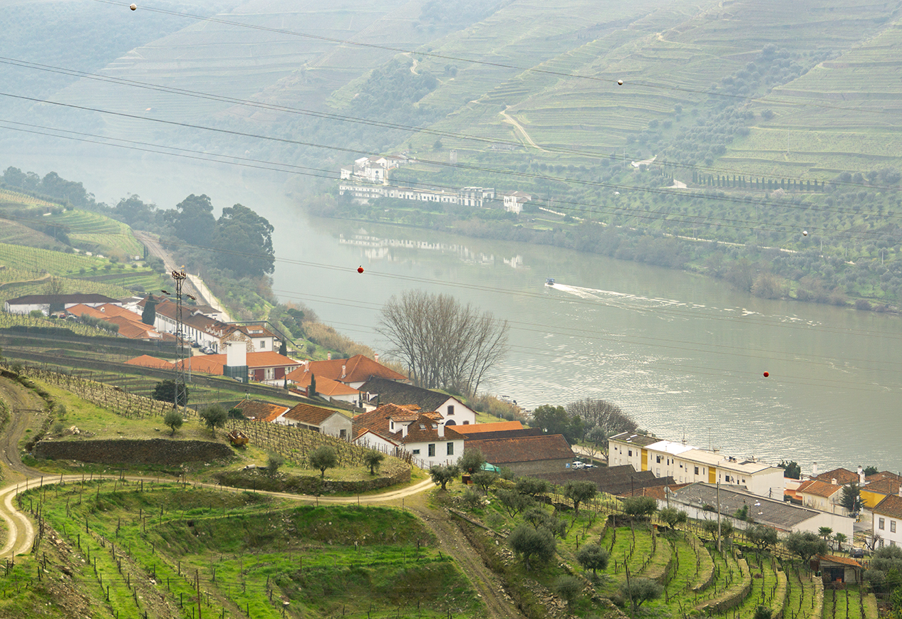 Douro Valley & Porto (I):   A Day Exploring Quintas